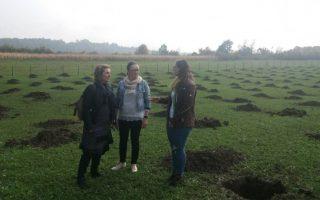 Bihać: Ena Zolić poslije studija u Štutgartu doći će u Gatu i uzgajati  lješnike