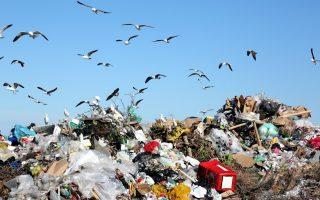 Plastični otpad: Šta vi možete da uradite?