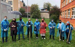Mladi Zenice kroz projekat Let's Do It realizovali akciju sadnje sadnica