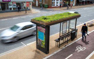 Britanski grad Leicester pretvorio autobuske stanice u zelene vrtove za pčele
