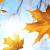 Izbjegnite jesenju melanholiju, oraspoložite se!